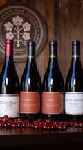 Pinot Lover's 4-Bottle Collection
