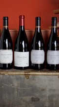 Pinot Lovers 4-Bottle Collection